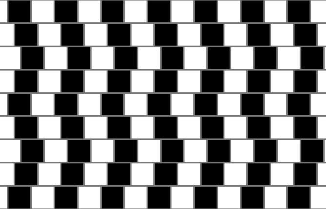 证据表明动物也会产生视错觉图片